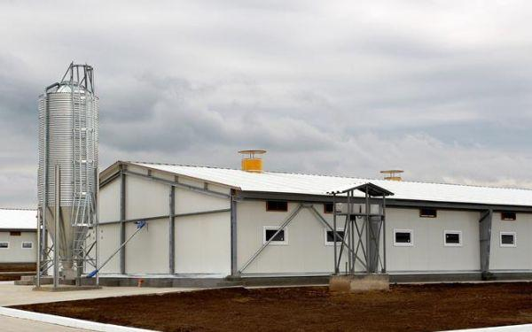 Jakie budynki w gospodarstwie rolnym wymagają pozwolenia na budowę? Gospodarstwo rolne a prawo budowlane