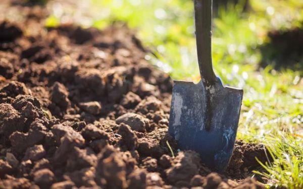 Jesienne przekopywanie ziemi w ogrodzie
